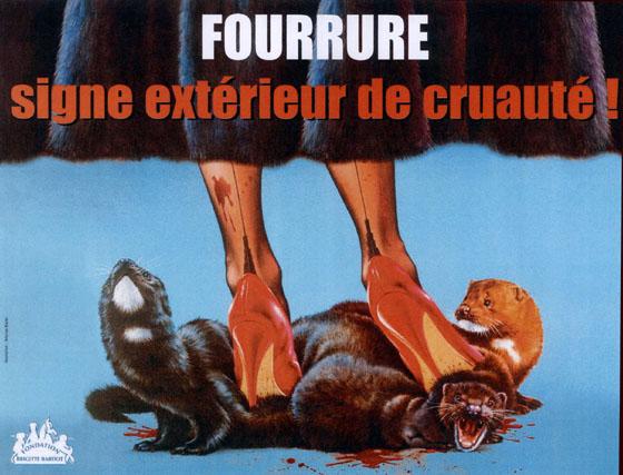 stop fourrure